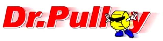 logo-dr-puley